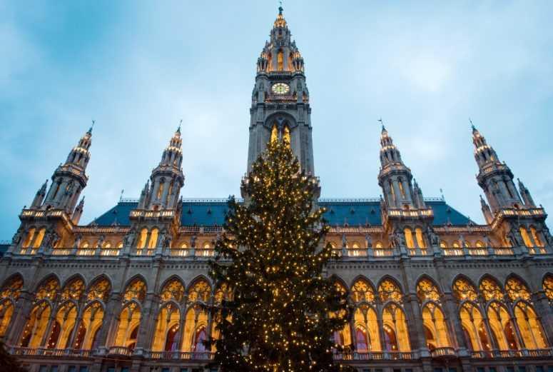 5 самых сказочных рождественских ёлок в Европе