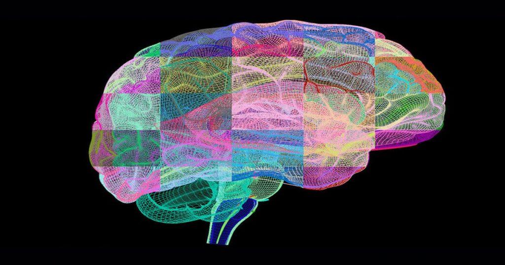 Нейробиологи говорят, что забывчивость - свойство острого ума